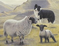 Tending the Sheep Fine Art Print