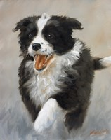 Strutting by John Silver - various sizes, FulcrumGallery.com brand