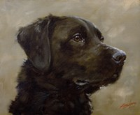 Black Lab 7 Fine Art Print