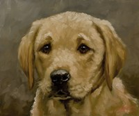 Puppy 1 by John Silver - various sizes, FulcrumGallery.com brand