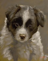 Puppy 2 by John Silver - various sizes