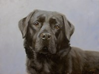 Black Lab 11 by John Silver - various sizes, FulcrumGallery.com brand