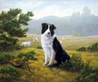 In the Glen by John Silver - various sizes - $25.99