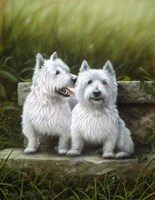 Pair of Westies Fine Art Print
