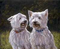 Westie 8 by John Silver - various sizes