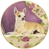 Chihuahua With Pillow by John Silver - various sizes