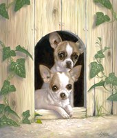 Chihuahua's In Doghouse by John Silver - various sizes