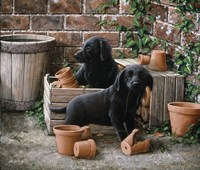 Among the Flower Pots by John Silver - various sizes