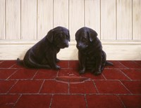 Siblings by John Silver - various sizes
