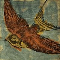 Bird Collage No 1 by John W. Golden - various sizes
