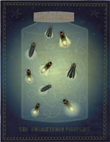 Lightning Bugs Fine Art Print