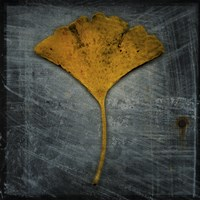 Gingko 2 by John W. Golden - various sizes - $16.99