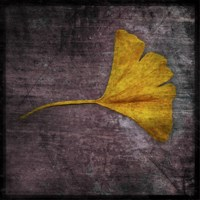 Gingko 4 by John W. Golden - various sizes - $16.99