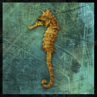Seahorse by John W. Golden - various sizes