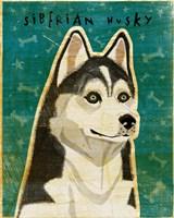 Siberian Husky Fine Art Print