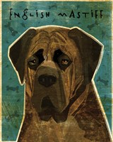 English Mastiff - Brindle Fine Art Print
