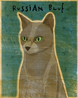 Russian Blue Fine Art Print