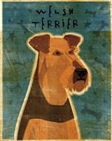 Welsh Terrier by John W. Golden - various sizes