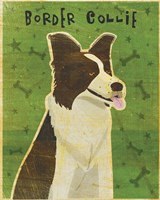 Border Collie by John W. Golden - various sizes, FulcrumGallery.com brand