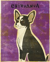 Chihuahua (black and white) by John W. Golden - various sizes