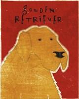 Golden Retriever by John W. Golden - various sizes - $25.49