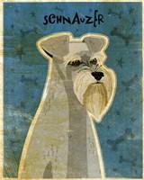 Schnauzer Fine Art Print