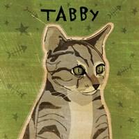 Tabby (grey) Framed Print