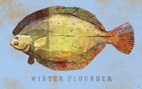 Winter Flounder Framed Print