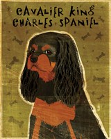 Cavalier King Charles (black and tan) Fine Art Print
