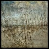 Masonboro Island No. 6 Framed Print