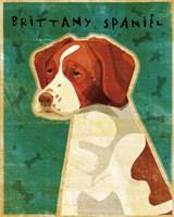 Brittany Spaniel Fine Art Print