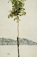Horse Chestnut Tree, Lake Constance. 1912 Fine Art Print