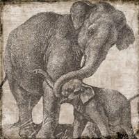 Elephant 2 Fine Art Print