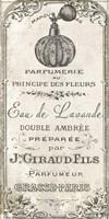 Signes Francais II Fine Art Print