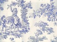Toile Fabrics VI Framed Print