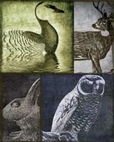 Hunting Season VII Framed Print