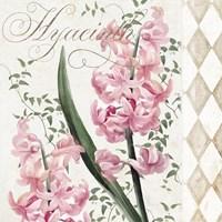 Hyacinth I Framed Print