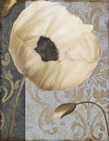 Poppy Brocade I by Color Bakery - various sizes