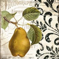 Les Fruits Jardin I Fine Art Print