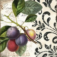 Les Fruits Jardin III Framed Print