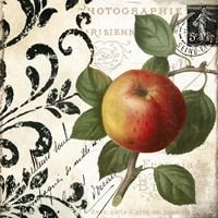 Les Fruits Jardin IV Fine Art Print