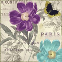 Petals of Paris II Fine Art Print