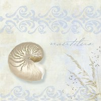 She Sells Seashells I by Color Bakery - various sizes