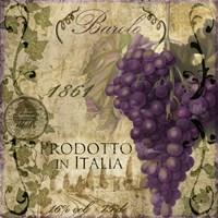Vino Italiano II Fine Art Print