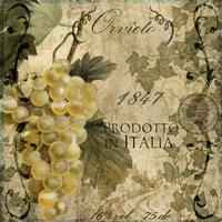 Vino Italiano IV Fine Art Print