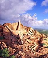 Bones of a Triceratops Fine Art Print
