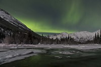 Aurora Borealis over Annie Lake, Yukon, Canada Fine Art Print
