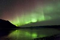 Aurora Borealis over Kluane Lake Fine Art Print