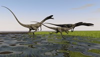 Group of Coelophysis Dinosaurs Fine Art Print