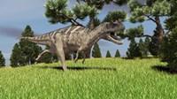 Ceratosaurus Framed Print